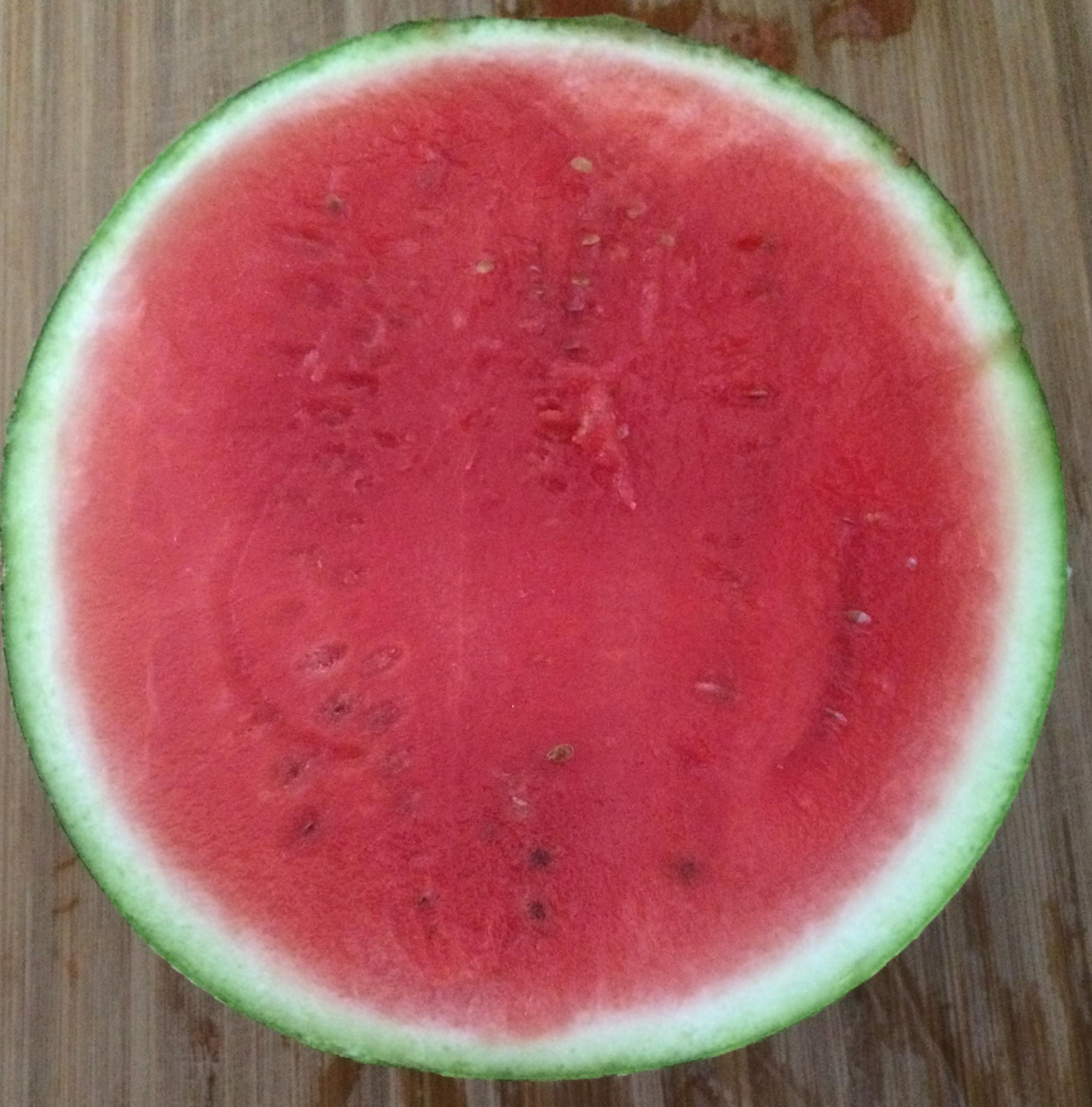 allergisk mot vattenmelon